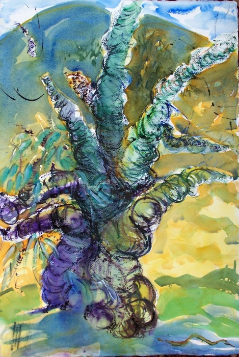 Dowager Willow, 2, watercolor, 14x21 in.