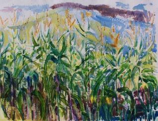 Linda's Corn Field