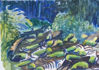 Moss on Stream Rocks