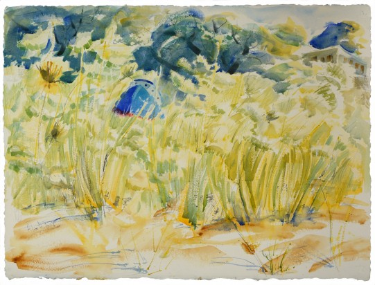 Dry Dock in a Field of Queen Anne's Lace, wc on 300lb paper, 22x31in.
